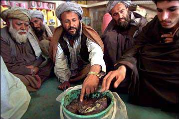 kandahar opium traders